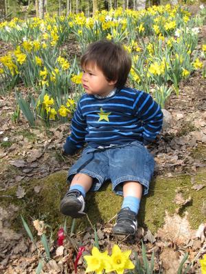 Lille Carl betraktar våren