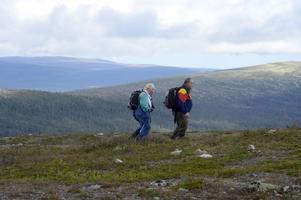 Ett lättvandrat fjällområde är Nipfjället och Städjan.