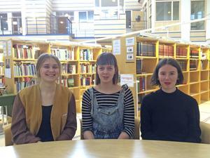 Sättet vi uppfostrar barnen är det som lägger grunden för skillnaderna mellan kvinnor och män tycker Nora Boestad, Hanna Jonsson och Emelie Markgren, elever på Bromangymnasiet.