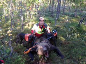 Anders Bodin med den fällda stora björnhanen och hans hundar.