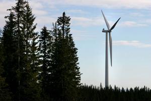 Kommunalrådet Maria Kjellström (VV) hävdar att JP Vind, som vill bygga en vindkraftspark i Moskogen, har  utlovat 20 miljoner kronor till en gång- och cykelväg, om Västjämtlands väl säger ja till vindkraftsbygget.