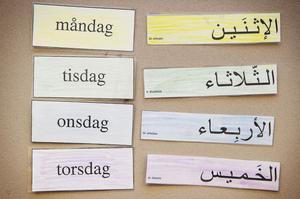Det är stora skillnader på svenska och arabiska. Det vittnar om inte annat dessa lapar på.