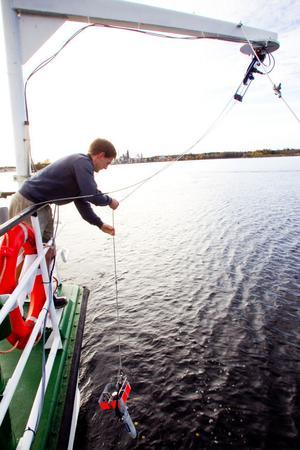 För att mätvärdena ska bli korrekta måste temperaturen mätas i vattnet på olika djup. En sond skickas ner av Anders Åkerberg.