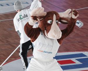 Bruce The Moose – Skandinaviens bästa basketmaskot enligt Peter Öqvist i Luleå.