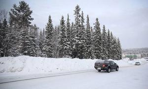 I skogen mellan Inspektörsvägen och Hagvägen ska det mindre köpcentrat ligga.