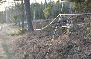 Den nedfallna kabeln går precis längs väg 528, skriver en boende i Norsbol.