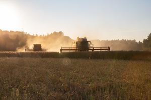 Som följd av beslutet har den brukningsvärda jordbruksmarken fått en markant förbättrad värdering och hänsynstagande, skriver debattörerna.