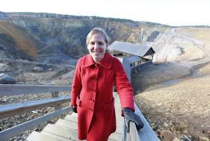 Falu Gruvas verksamhetschef , Anna Björkman, har vid flera tillfällen riktat kritik mot hur Falu kommun arbetat med världsarvet. Nu kan ett nystartat projekt, i kombination med en antagen besöksstrategi för kommunen, vara på väg att förändra situationen.