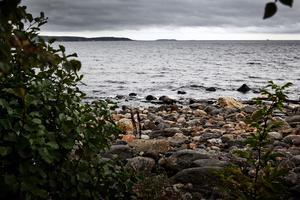Mellan 1952 och 1964 sänktes runt  23 000 tunnor med bland annat kvicksilverhaltigt avfall i Sundsvallsbukten. Avfallet bestod av rester från tillverkning av vinylklorid, vilket används som råvara vid tillverkning av PVC. Arkivbild: Johan Engman