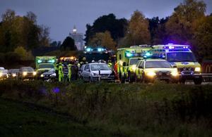 seriekrock. En häst slet sig från sin ägare och sprang ut på riksväg 80 i går. Fyra bilar var inblandade i olyckan.