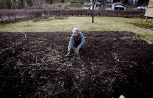 Det är alltid bättre att odla sina egna grönsaker. Även när strålningen var som högst var det inte hälsofarligt att odla sina egna grönsaker. Margareta Örn-Liljedahl har två stora land och uppmuntrar alla att odla egna grönsaker.