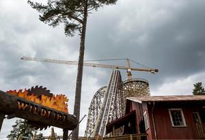 Även Kolmården satsar på åkattraktioner. Foto: Christine Olsson / TT