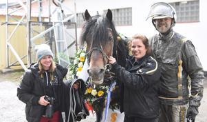 Solänget-hästen Tangen Haap vann Elitkampen på Solvalla. Här poserar han med Kajsa Lind, Ida Karlsson och Björn Karlsson.