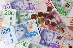 Både kontanter och plånböcker har stulits från flera äldre, både från bostäder och lägenheter på äldreboenden. Foto:  Fredrik Sandberg / TT /