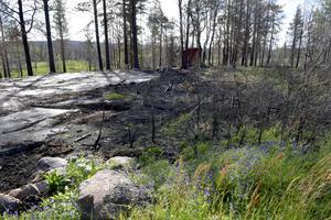 Här i Grantorp, stod en jaktkoja som brann ned vid branden på skjutfältet.