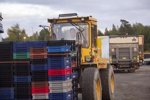 Bo Axelsson gillar att hjälpa till med att köra traktor.