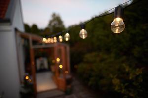 Ljusslingor med ett varmt sken ger en ombonad känsla. Bild: Andreas Hillergren/TT
