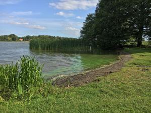 Just nu är det gröna alger i strandkanten men badsäsongen är också över för de flesta.