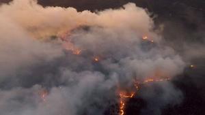 Skogsbranden i Pålgård. Drönarbild.Foto: Emil Dahlgren