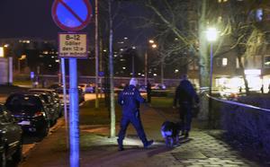 En 23-årig man har dödats i en skottlossning på Ramels väg i Malmö på torsdagskvällen.