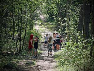 På Skarpåkersskolan i Kramfors har man tillgång till grönområden på nära håll.