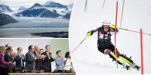 Insändarskribenten menar att vi inte kan vänta på politikerna utan borde se det alpina landslaget som miljöförebilder. Foto: Fredrik Sandberg / Scanpix, Berit Roald / NTB Scanpix och Pontus Lundahl / TT.
