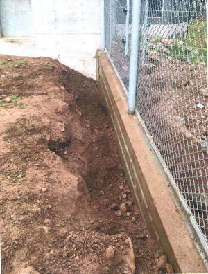 Ett hägn där björnar grävt. Foto: FUP.