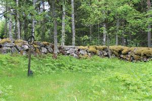 Erik Pehrsson, som  bistod Gottlund under dennes resa i Orsa finnmark, vilar på skogskyrkogården i Hamra, under sitt egenhändigt smidda kors. Foto: Jan-Olov Nyström