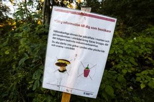 Skyltar med uppmaningen om att inte gräva i jorden eller plocka bär och svamp möter besökarna.