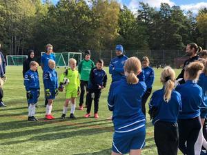 Nynäshamns IF planerar att bjuda in flera högt meriterade spelare. Foto: Emma Ny