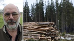 Erik Brate i Bråfors äger 578 hektar skog och hamnar på andra plats över privatpersonerna i Fagersta kommun som äger mest produktiv skogsmark. Foto: TT/FP:s arkiv
