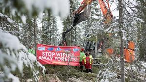 Greenpeace på plats i Harrsjöskogen. Foto: Greenpeace