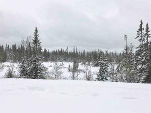 Ett snötäckt Ullådalen den 29 maj.