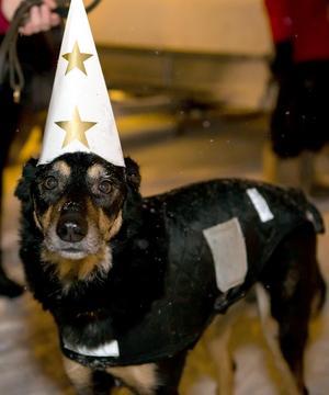 Julmarknadsdagarna i Orebygden engagerar de flesta... FOTO: TORBJÖRN LEKTELL
