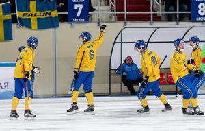 Daniel Berlin firade ledningsmålet mot Ryssland i gruppspelet, med en honnör. Foto: Rikard Bäckman / Bandypuls.se / TT