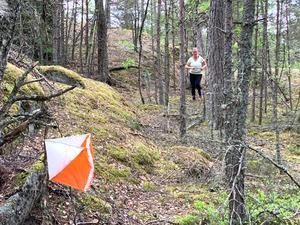 Man väljer själv om man vill gå eller springa när man orienterar mellan kontrollerna. Bild: Mattias Östholm