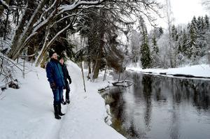 Cirka 500 granar kommer att tas bort i Säterdalen. Staffan Jansson och Torbjörn Murars ser fram emot ett rikare fågelliv då lövträden får ta mer plats i reservatet.