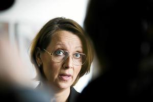 Advokat Amanda Hikes har försvarat Johanna Möller.