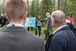 Bild: Christian Åslund/Greenpeace
