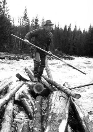 Ett av de farligaste momenten för en flottare var när stockarna fastnat ihop i så kallade timmerbröten och dessa skulle säras på, mitt i en strömmande fors. Många flottare skadades, drunknade eller klämdes ihjäl under arbetet. I en intervju i ÖP 1974 berättar den då 80-årige