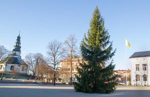 Förra året såg julgranen på Stora torget ut såhär.