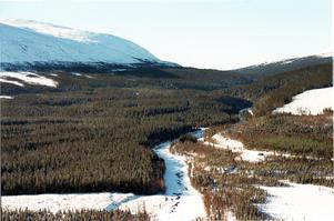 Foto: ArkivSnön i fjällvärlden kommer att ligga kvar länge, snödjupet är större än på många år.