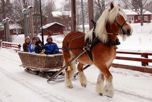 Harri Wiklund och ardennern Calle, Årets Dalahäst 2008, på bron i Gagnef under en korttur för några år sedan. Numera är Calle en attraktion i Astrid Lindgrens Värld – och Harri kör motorcykel.