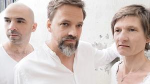 Petter Bergander Trio. Pressbild
