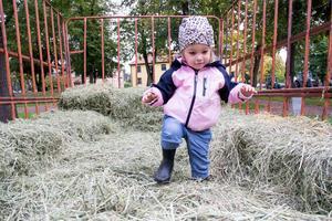 Tyra Pettersson, två år, testade att hoppa i hö och familjen planerade även att kolla på djuren. En stund senare tittade hon fascinerande ner på de levande kräftorna i lantbrukaren Lars Löfgrens frigolitlåda, dock utan att få klappa dem.
