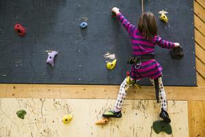 En klättervägg skulle kunna finnas i en allaktivitetshall.