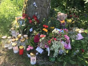 Det var på lördagen den 19 maj som Lena Wesström hittades mördad bara hundra meter från sitt hem i Hjärsta. Då hade hon varit försvunnen sedan måndag natt.Arkivfoto