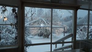 Söråker under snö. Bild: Diana Marie