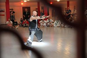 Swedis Hung Kuen Association visade olika kung fu-stilar.