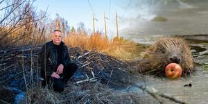 För Lasse Blomqvist är det självklart att värna om djur och natur. Bilden är ett montage.